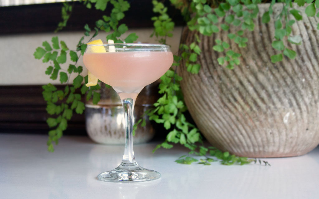 The Gin Cocktail