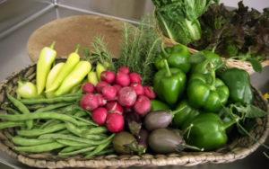Plough Towers veggies
