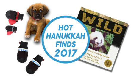 Day 7: Hot Hanukkah Finds 2017