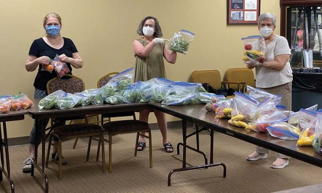 Temple Israel's Team Glean Harvests for Plough Towers